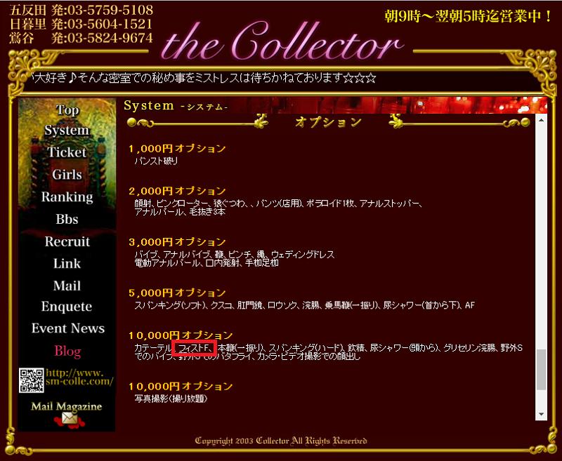 ザ・コレクター オプション